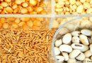 Gobierno de Nicaragua presenta estrategia nacional de producción de semillas