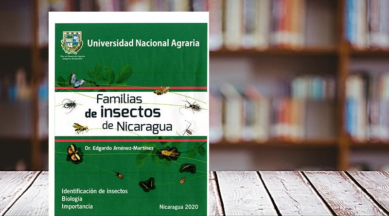 Familia de insectos de Nicaragua