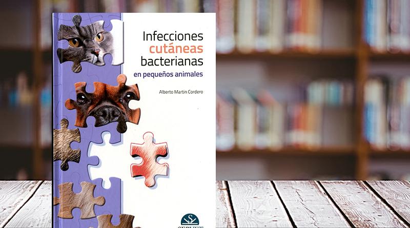 Infecciones cutáneas bacterianas