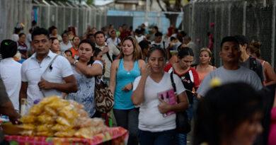 Sector agropecuario de Nicaragua, el gran soporte de la economía en medio de las crisis